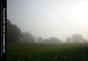 Misty Brabant stock by Khudozhnik-Stock