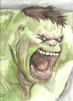 The Incredible Hulk by bensonput