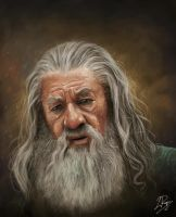 Gandalf the Grey Portrait by LaurenceAndrewPage