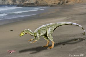 Compsognathus by NTamura