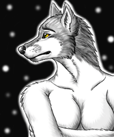 Sno Wulf by arcticfoxie