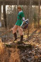 Link by CrisisCosplay