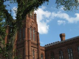 The Smithsonian by Aziot