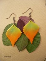 Autumn Birch Leaves by mar-rie