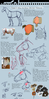How To Draw Horses Tutorial by Capella336