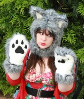 Custom Grey Wolf Dog Hood and Paws by Lady-with-a-buzzsaw