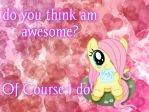 Question 2 by Filly-Fluttershy