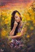 Fields of Gold II by Crims0nPhotography