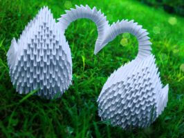 Origami heart swans by prosaix
