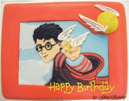 Harry Potter Cake by ginas-cakes