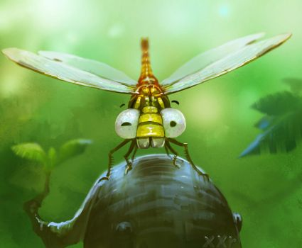Dragonfly by xiongrong