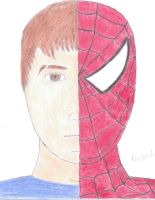 The Amazing SpiderJay by Packerfan95
