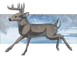 Whitetail Deer CSS by CaliberArts