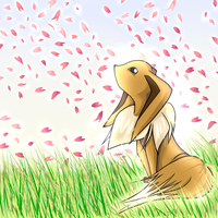 Eevee Stares Up To Sakura by Kerlyyy