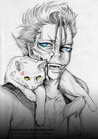 BLEACH: The Hollow-kitty and the Panther King by blackstorm