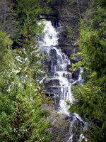 Silver Falls by TRunna