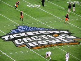 TicketCity Cactus Bowl Logo on the Field by BigMac1212