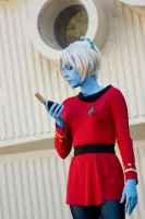 Star Trek Series 2 - 1 by chirinstock