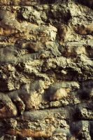 Texture - Wall 02 by Mustesielu