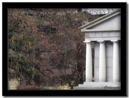 Columns of White by goldengirl11