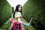 Alice Madness Returns - The Queen's Maze by Medowsweet