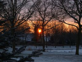 A Christmas view by zhaleh