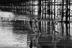 Brighton Pier 02 by cahilus