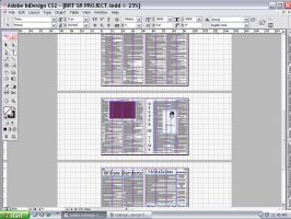 Sr. Project InDesign 3 by xRaeylx