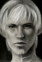 fenris by Pickleweasels