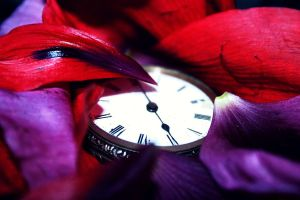 Pocket Watch by bloodrosephotography