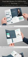 Triund Web Business Tri-Fold Brochure by dotnpix