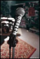 Mic Check by MikePecci