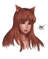 Holo - Spice and Wolf Potrait by BoinBoing