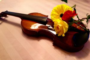 Violin and Flowers by SorciereD-Infloresce