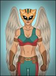 HawkGirl by DraganD