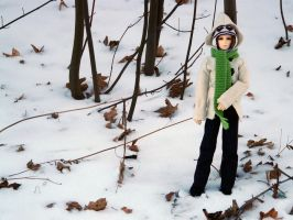 Winter in the Park - Georg VII by idrilkeps
