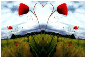 love is in the air by MyLoveisMusic