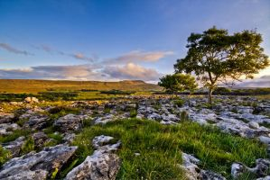 Twistleton Scar 2 by CharmingPhotography