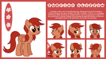 MLP OC Expanded Sheet : Surfing Blossom by outlaw4rc