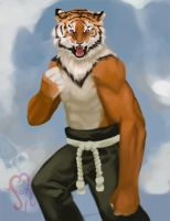 Tiger fighter by Johed