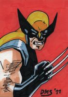 Wolverine by keirle