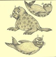 Harbor Seals by Dead-Raccoons