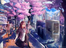 Sakura in shibuya  COM : by Innervalue by Caphricorn