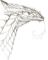 Dragon Busts II - Davis Dragon by TheSolitarySandpiper