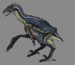 Day 17 - Haliaeetus leucocephalus by Thobewill