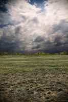 PreMade - Open Field by DreamChaseStock