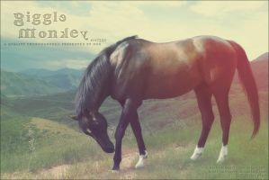 giggle monkey by renderedsublime