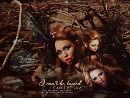 I Can't Be Tamed by Rona2010