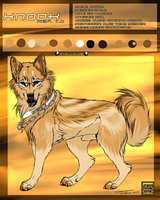 Knook 2013 ref sheet. by AgentWhiteHawk