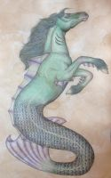 Sea Horse by TeaAndIntrigue